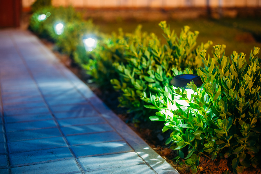 Landscape and Lawn Lighting